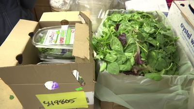 Stores pull romaine lettuce after E. Coli reports