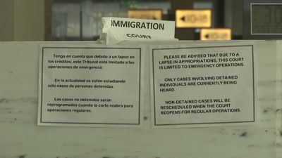 Shutdown shutters immigration courts