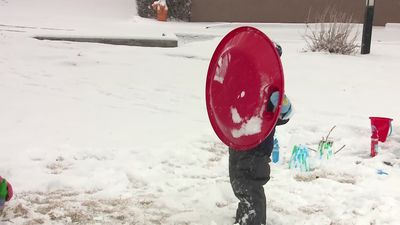 Storm blankets Albuquerque with snow