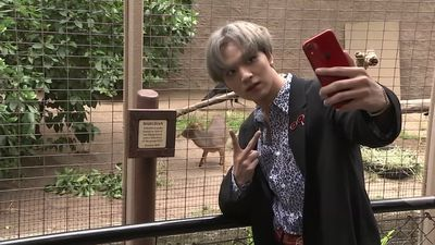 K-pop group NCT 127 visits the LA Zoo