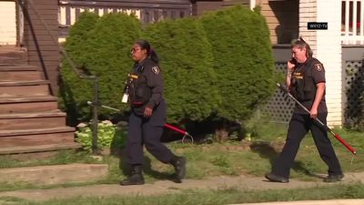 Witnesses describe fatal dog attack on girl