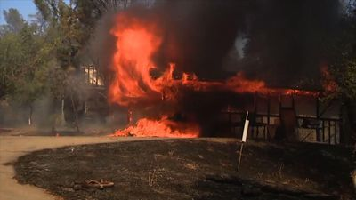 Northern Calif. fire threatens over 1,000 homes