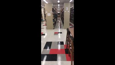 Raccoons spotted in Arkansas State library
