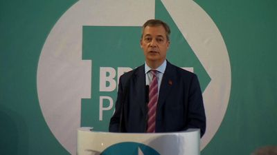 Farage: Brexit Party will not contest Tory seats
