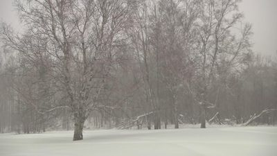 Snow falls in Minnesota ahead of deep freeze
