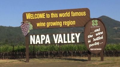 Masks and Merlot: California wineries to reopen