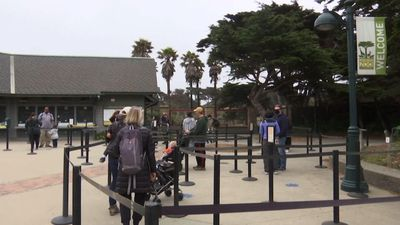 San Francisco Zoo reopens with virus safety rules