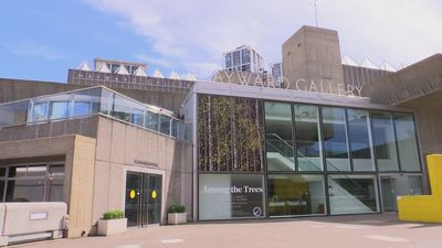 London's Hayward Gallery reopens with a 'great forest of art you can escape to'