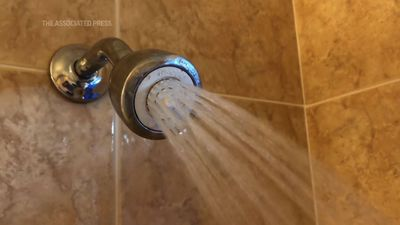Trump pet peeve could wash away showerhead rules