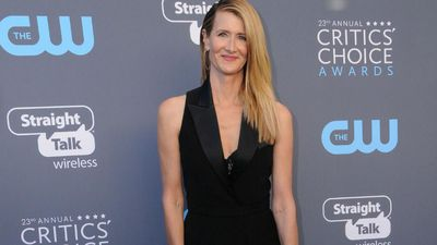 Laura Dern 'couldn't have asked' for something more 'fun' than Marriage Story