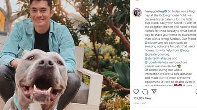 Henry Golding fosters dog