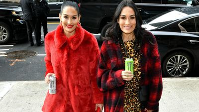Totally Twinning: Brie and Nikki Bella have had 'identical' pregnancies