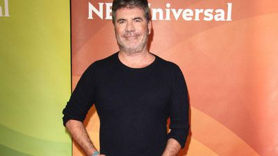 Simon Cowell's dogs fly on his private jet