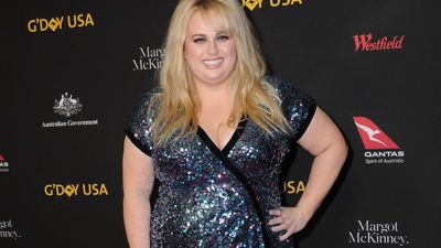 Rebel Wilson's hallucinations inspired acting career