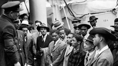 Windrush scandal victims: A lawyer's advice