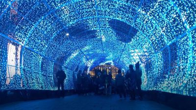 Tunnel of light thrills city visitors