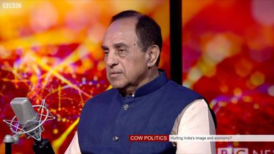 Cow politics: Is it hurting the Indian economy?