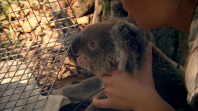 Australia With Simon Reeve - Australia With Simon Reeve - Episode 2