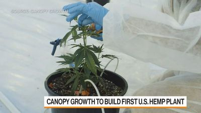 Canopy Growth CEO on Plans to Build First U.S. Hemp Plant
