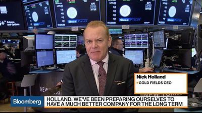 Gold Fields Not Compelled to Make an Acquisition, CEO Holland Says