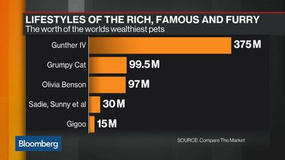 Lifestyles of the Rich, Famous and Furry
