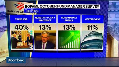 BofA Fund Manage Survey Shows Investors Seeking Safety