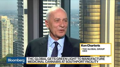 High-Level Medicinal Cannabis' Strong Growth Seen: THC Global