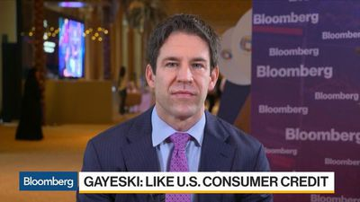 Could See Mini U.S. Equity Bubble Forming Next Year: SkyBridge's Gayeski
