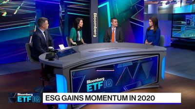 A Warning About 'Green Swans' as Money Pours into ESG ETFs