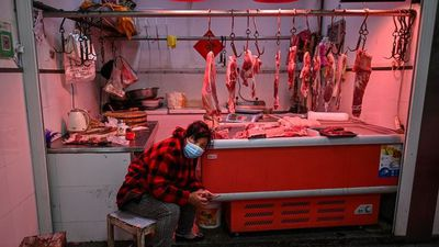 Wuhan's Wet Markets Return to Life