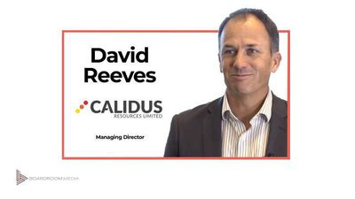 ASX: CAI Market update July 2019 - David Reeves