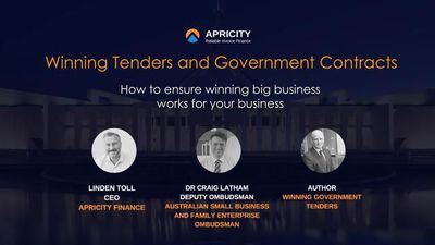 Winning Tenders and Government Contracts