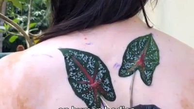 What tattoos look like around the world
