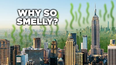 Why Does New York City Smell So Bad?