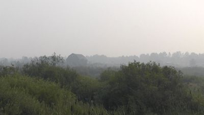 Grey smoke from forest fire hangs in northeastern Ontario air
