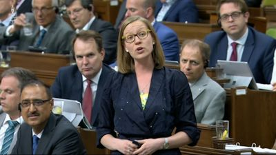 'Wild' accusations over social media in elections rile question period