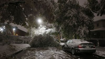 Cold, stormy winter forecast across much of Canada