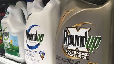 Class action proposed against Roundup makers