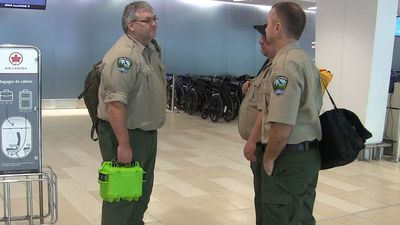 Wave of Canadian firefighters expect tailored tactics to battle Australian blazes