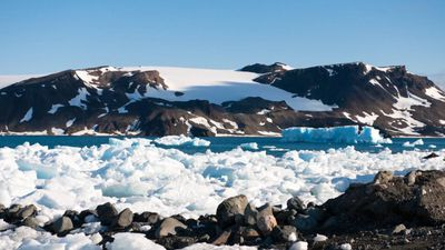 20 Percent of Snow on Island in Antarctica Melted in 9 Days