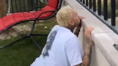 Chris Brown cowers behind a wall as crazed fan yells he's her 'life partner'