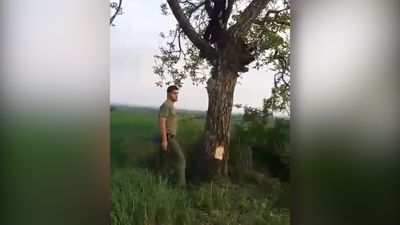 Epic fail climbing tree!