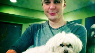 Jim Parsons dog dy*ng helped him make decision to quit 'The Big Bang Theory'