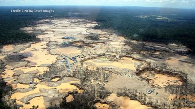 New Report: Rainforest Destruction From Gold Mining Hits All-time High In Peru