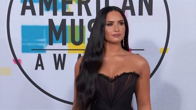 Demi Lovato's TV dude wants a date
