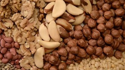 Top 9 Healthiest Types of Nuts
