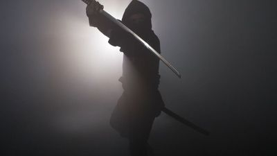 10 Stealthy Facts About Ninjas
