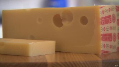 Swiss Emmental cheese