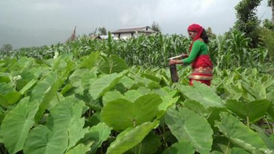 Improving land management in Nepal