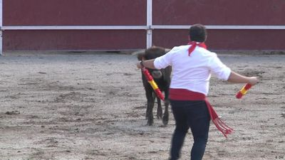 Cruel spectacle in Spain